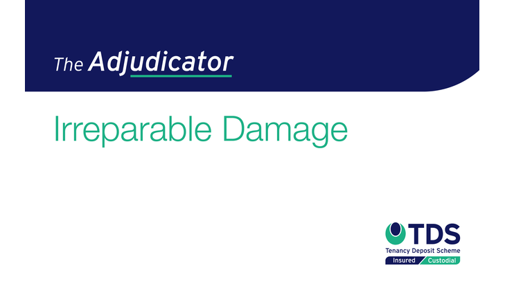 In this week's 'The Adjudicator', the landlord claimed for a replacement kitchen sink including the fitting charge. Read more here.