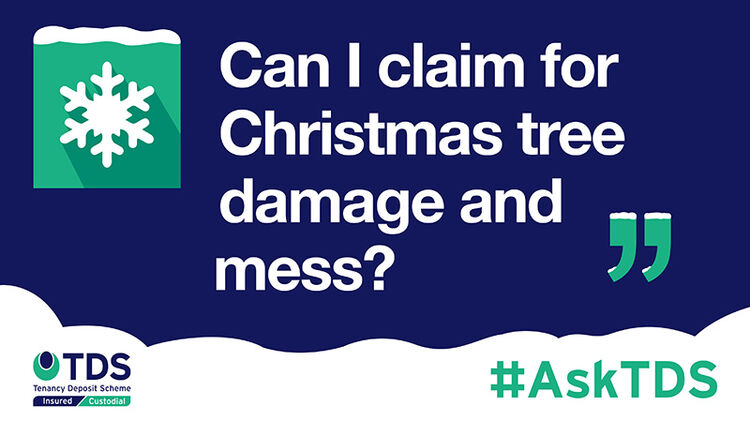 "Image of #AskTDS: ""Can I claim for Christmas tree damage and mess?"""