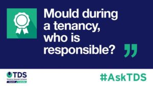 """Image saying """"#AskTDS: """"Mould during a tenancy, who is responsible?"""""""