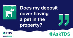 """#AskTDS: """"Does my deposit cover having a pet in the property?"""" graphic"""