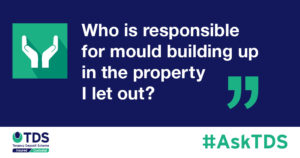"""image saying """"Who is responsible for mould building up in the property I let out?"""""""