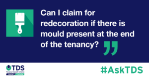 Image saying Can I claim for redecoration if there is mould present at the end of the tenancy?