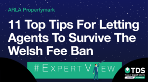 "Image saying ""#ExpertView: 11 top tips for letting agents to survive the Welsh fee ban"""
