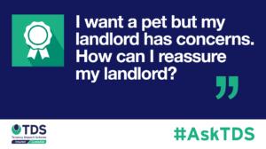 AskTDS blog image - pets and landlord concerns