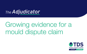 In this 'The Adjudicator' case, the letting agent initiated a dispute claim for £700 on behalf of the landlord. Find out more here.
